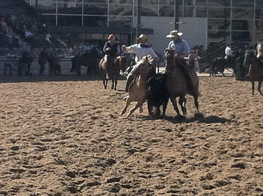 L'épreuve du Rodeo